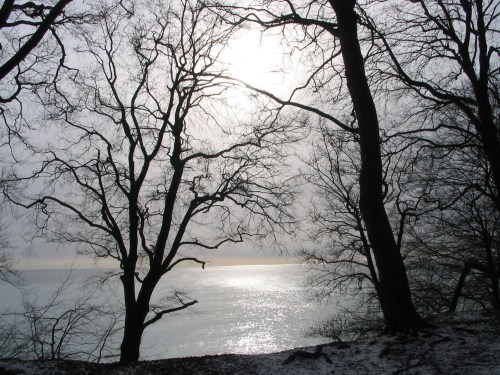 winter_at_sea.jpg
