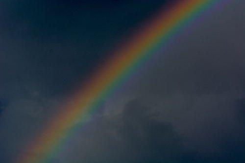 Rainbow_GilenLinn