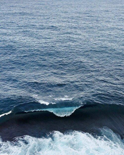wave_libertad