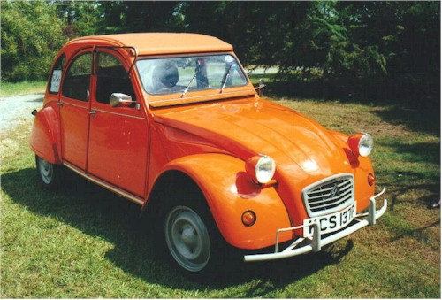oranjeeend-anja